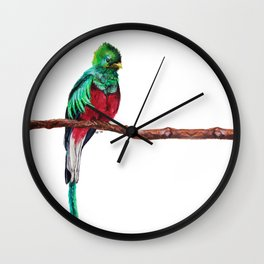 Pharomachrus mocinno Wall Clock