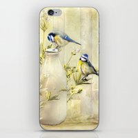 tits iPhone & iPod Skins featuring English Blue Tits by Trudi Simmonds