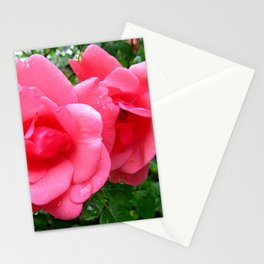 roses after rain Stationery Cards
