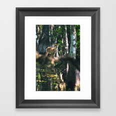 Forest Fawn Framed Art Print