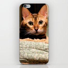 Did You Knock? iPhone Skin