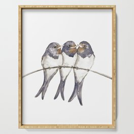 Three young swallows Serving Tray