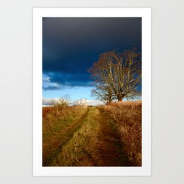 Road to the Storm Art Print