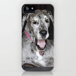 Happy Great Dane iPhone Case