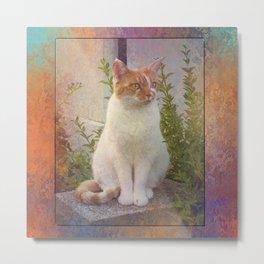 Beautiful Kitty Metal Print