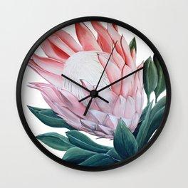 King Protea Acrylic Painting Wall Clock