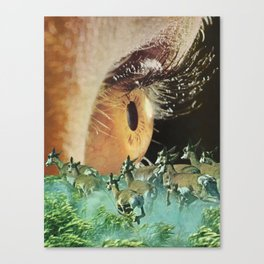 Trick Of The Eye Canvas Print