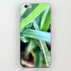 Grass. iPhone & iPod Skin