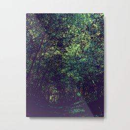 Deepwood canopy Metal Print