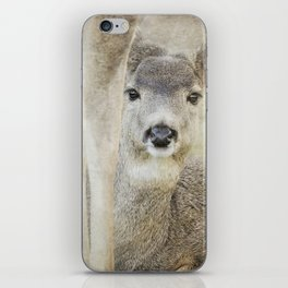 Keeping a Low Profile iPhone Skin