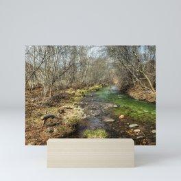 Oak Creek Mini Art Print