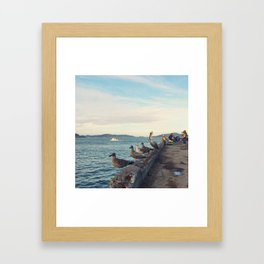 They haven't noticed me yet Framed Art Print
