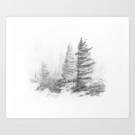 Bear Rocks in Fog Art Print