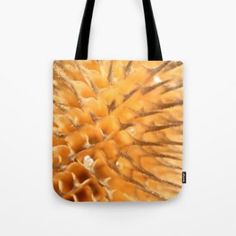 Dried plant Thorns and Prickles Tote Bag