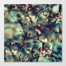 Vintage Blossoms - Triptych Canvas Print