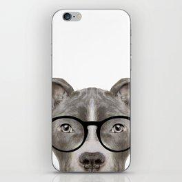 Pit bull with glasses Dog illustration original painting print iPhone Skin