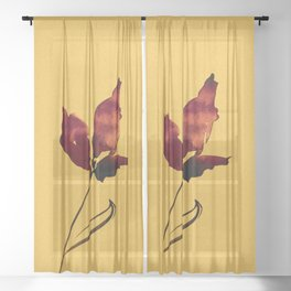 Floral Abstract No.2s by Kathy Morton Stanion Sheer Curtain