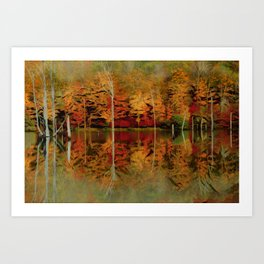 NEW JERSEY PINE BARRENS POND Art Print