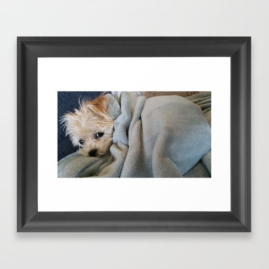 Don't Bother Me Framed Art Print