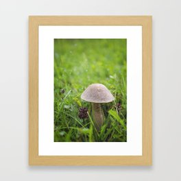 Mushroom in the Morning Dew by Althéa Photo Framed Art Print