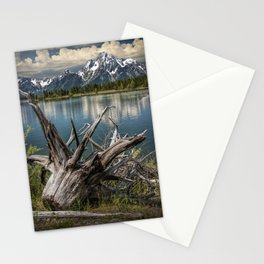 Tree Stump on the Northern Shore of Jackson Lake at Grand Teton National Park Stationery Cards