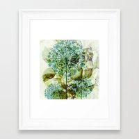 dandelion Framed Art Prints featuring dandelion by clemm