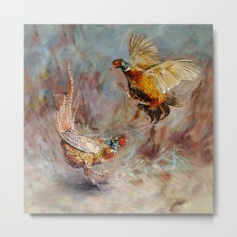 The Stramash. Male Pheasants fighting art. Metal Print