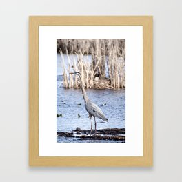 Huron Framed Art Print