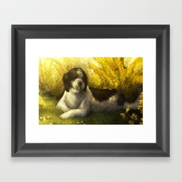Jake: Sheepdog Portrait Framed Art Print