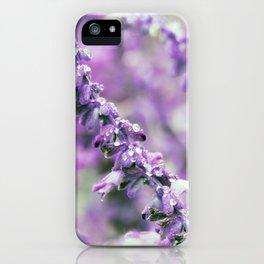 Longwood Gardens Autumn Series 160 iPhone Case
