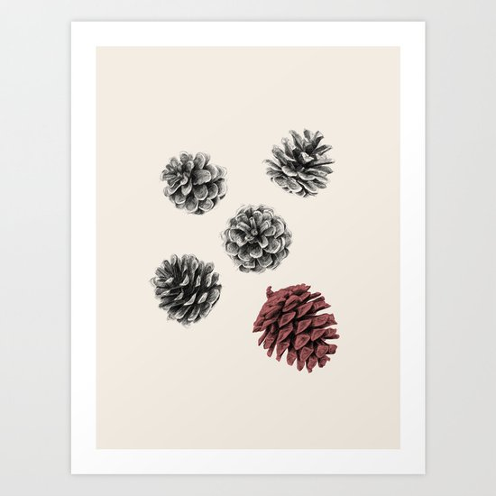 Pine cones by monicaldasanz