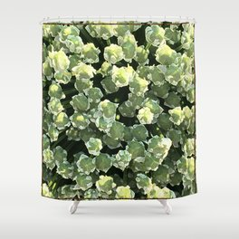 Corvallis Shower Curtain