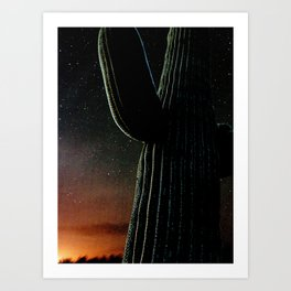 Cactus Country Art Print