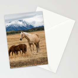 Mountain Horse - Western Style in the Grand Tetons Stationery Cards