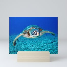 Tropical Swimming Sea Turtle Mini Art Print