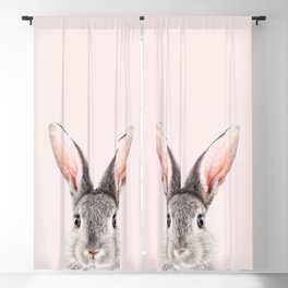 Baby Rabbit, Grey Bunny With Pink Background, Baby Animals Art Print By Synplus Blackout Curtain