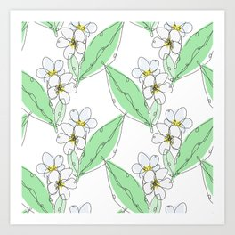 Plumeria Flowers Art Print