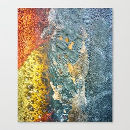 Colorful Abstract Texture Canvas Print
