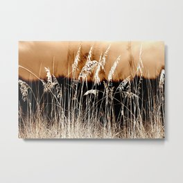 Sow Your Wild Sea Oats Metal Print