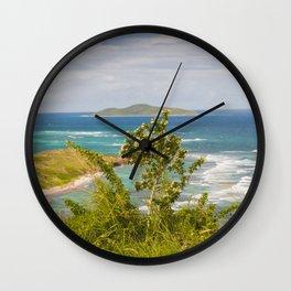 Buck Island Wall Clock
