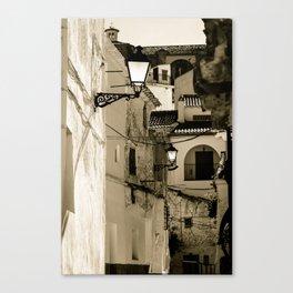 Gallivanting Canvas Print