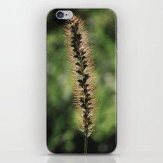 Fuzzy iPhone & iPod Skin