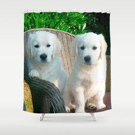 White Golden Retriever Dogs Sitting in Fiber Chair Shower Curtain