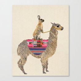 Forward - Alpaca with hare Canvas Print
