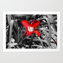 Red kisses Art Print