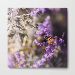 Butterfly Whispers Metal Print