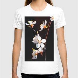 Beautiful, Delicate Japanese Apricot Flowers Against The Black Background T-shirt