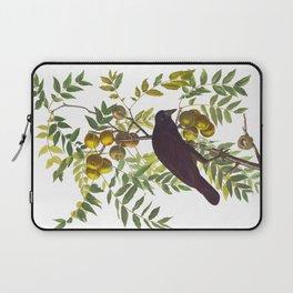 American Crow Vintage Bird Illustration Laptop Sleeve