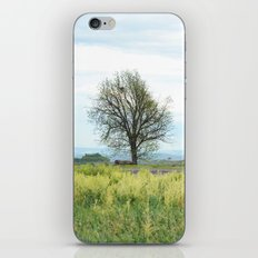 Field Below iPhone & iPod Skin