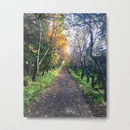 A Walk in the Park, Iceland Metal Print
